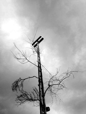 artificial_tree_by_plusch-d2leti0